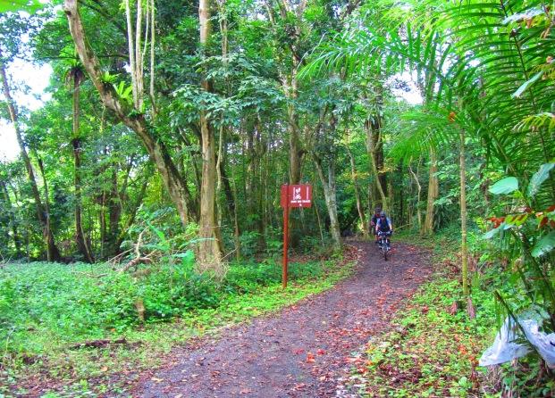 Gangsa trail